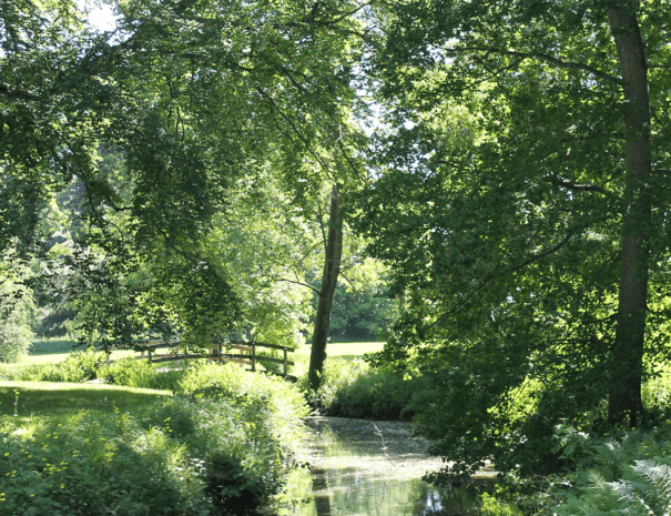 Natur_1200x1080